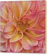 Pure Pastels Wood Print