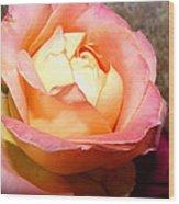 Pure Peachy Wood Print