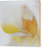 Pure White Wood Print