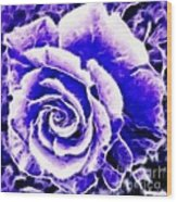 Purple And Blue Rose Expressive Brushstrokes Wood Print
