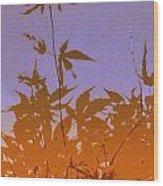 Purple And Orange Haiku Wood Print