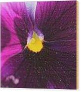 Purple And Pollen Wood Print