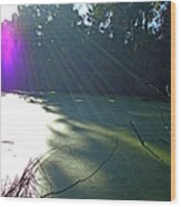 Purple Angel Of Lagoon Wood Print