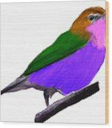 Purple Belly Warbler Wood Print