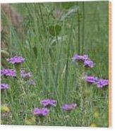 Purple Blooms Wood Print