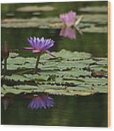 Purple Blossoms Floating Wood Print