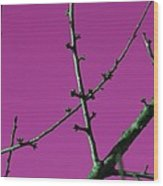 Purple Branches Wood Print