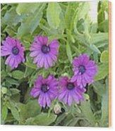 Purple By The Sea Wood Print