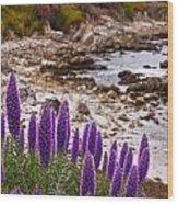 Purple California Coastline Wood Print
