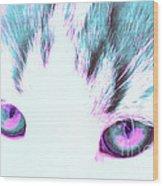 Purple Cat Eyes Wood Print