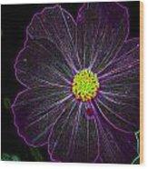 Purple Charisma Wood Print