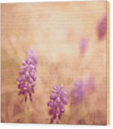 Purple Dreamy Wood Print