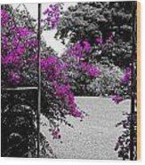 Purple Entrance Wood Print