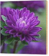 Purple Escape  Wood Print