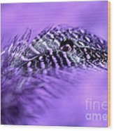 Purple Flight Wood Print