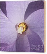 Purple Flower Square Wood Print