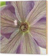 Purple Flower Wood Print by Thomas Leon