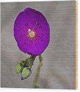 Purple Flower With Buds Wood Print