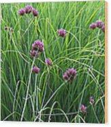 Purple Flowers And Grasses Wood Print