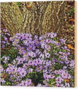 Purple Flowers At Base Of Tree Wood Print