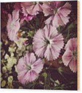 #purple #flowers #ihavenoclue #pretty Wood Print