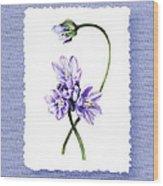 Purple Flowers Serenade Botanical Impressionism Wood Print