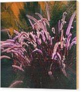 Purple Fountain Grass Fantasy Wood Print