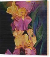 Purple Gold Irises  Wood Print