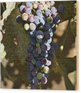 Purple Grapes Wood Print