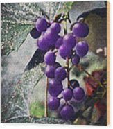 Purple Grapes - Oil Effect Wood Print