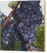 Purple Grapes Wood Print
