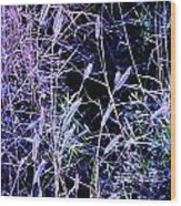 Purple Ground Cover Wood Print