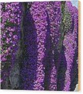 Purple Hanging Flowers Wood Print