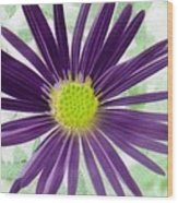 Purple Haze - Photopower 2858 Wood Print