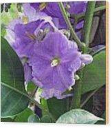 Purple Hearts Wood Print