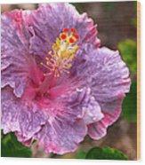 Purple Hibiscus Wood Print