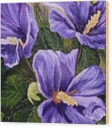 Purple Hibiscus Wood Print
