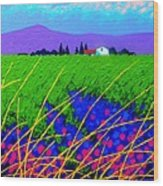 Purple Hills Wood Print by John  Nolan