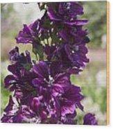 Purple Hollyhock Flowers Wood Print