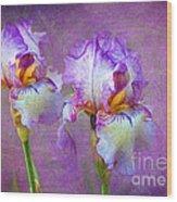 Purple Iris Wood Print by Lena Auxier