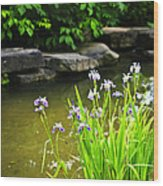 Purple Irises In Pond Wood Print by Elena Elisseeva