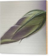 Purple Lisianthus Wood Print