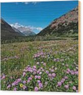 Purple Mountain Flowers Wood Print