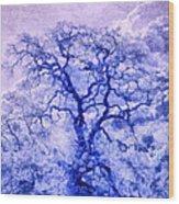 Purple Oak Tree Dream  Wood Print
