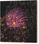 Purple Orbit Wood Print by Aimee L Maher Photography and Art Visit ALMGallerydotcom