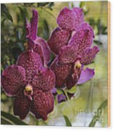 Purple Orchids With Bokeh Wood Print
