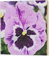 Purple Pansy Close Up - Digital Paint Wood Print