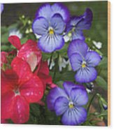 Purple Pansy Flowers By Line Gagne Wood Print