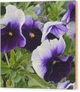 Purple Pansy Melody Wood Print