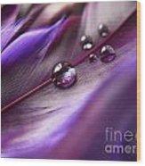 Purple Paradise Wood Print